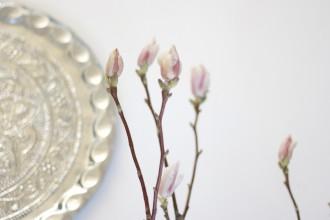 Silber BOHO Tablet und Magnolien