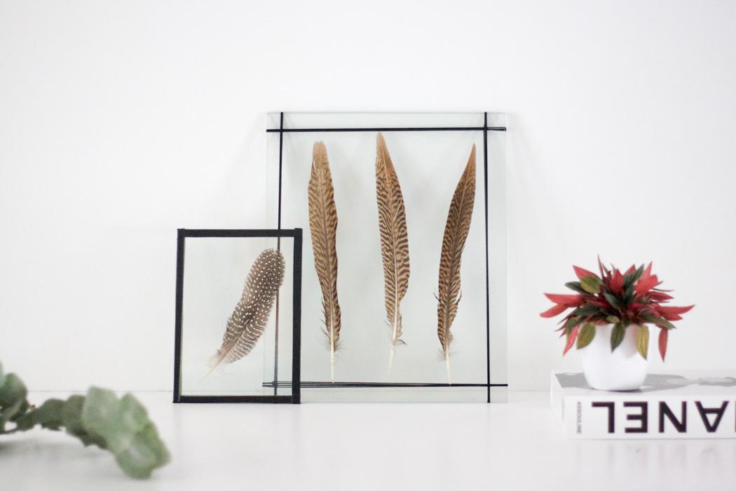 DIY - Federn im Doppelglasrahmen - Do it yourself Tutorial - Die schoensten Interior Deco DIY - lindalovesde