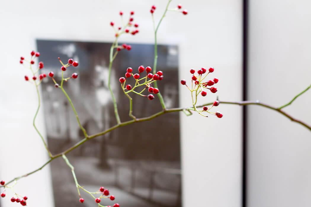 rote Beeren Herbstdeko - lindaloves.de DIY und Deco